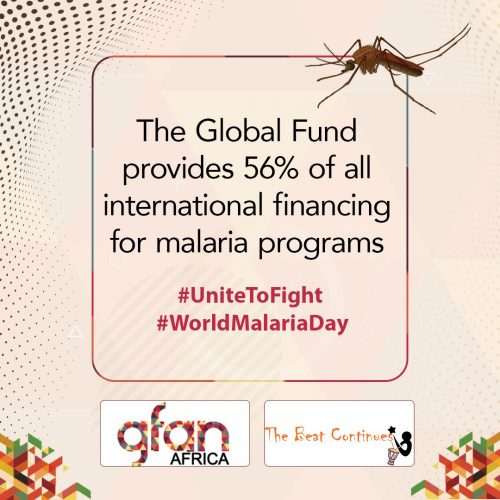 Amid COVID-19, the Fight Against Malaria Should not Falter